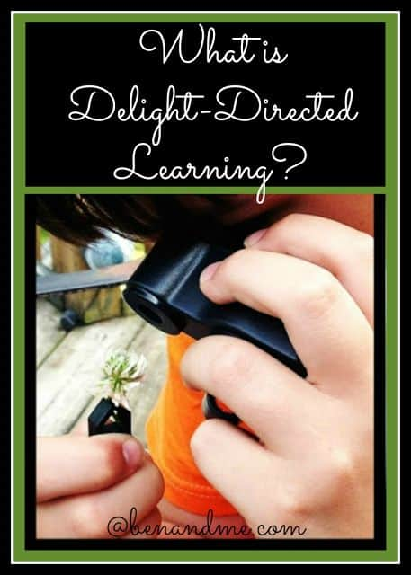 What is Delight-Directed Learning?