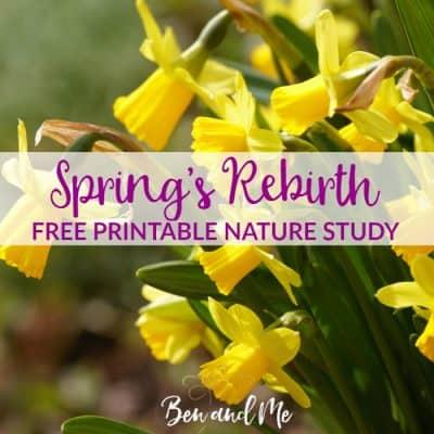 Spring's Rebirth  (free spring nature study printable)
