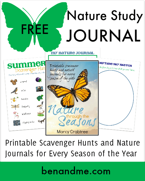 Free Nature Study Journal Summer