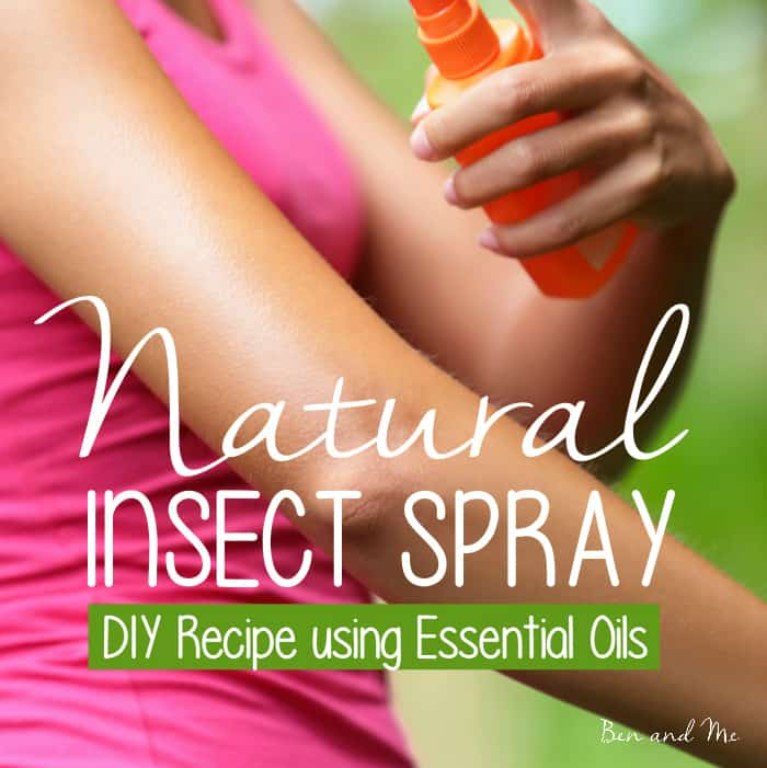 Essential Oils Insect Spray Recipe