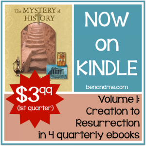 mystery of history on kindle