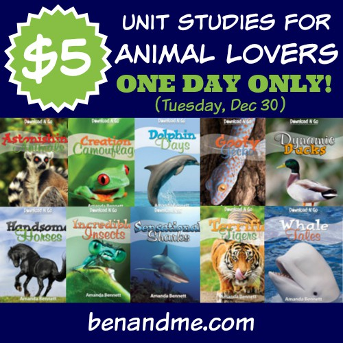 12 Days of Christmas with Unit Studies by Amanda Bennett — day 4