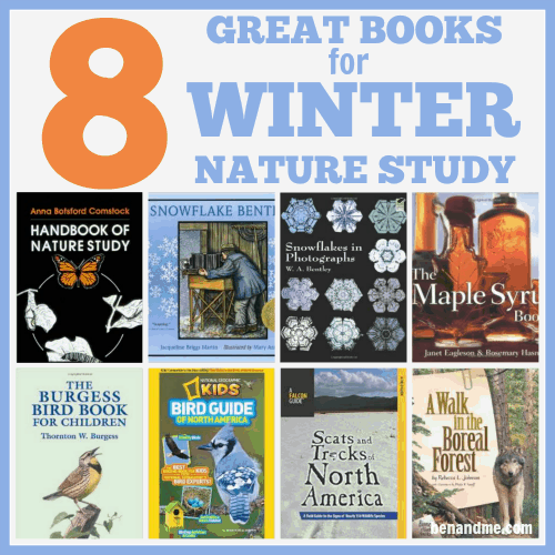 8 Great Books for Winter Nature Study