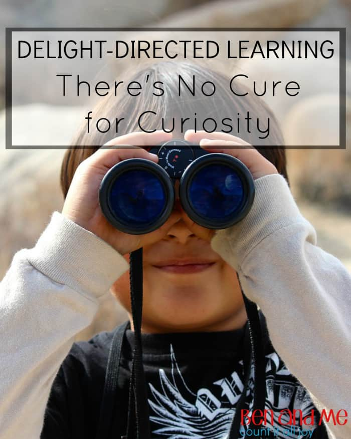 Delight-directed Learning There's No Cure for Curiosity