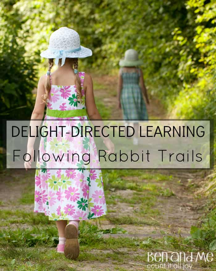 Delight-directed Learning Following Rabbit Trails
