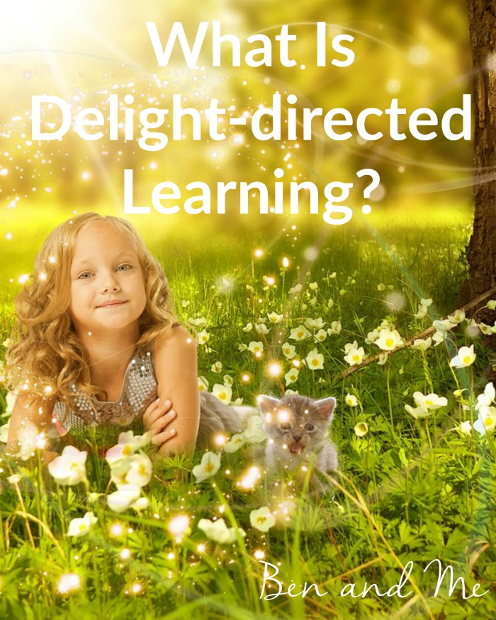 What Is Delight-directed Learning