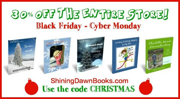 Shining Dawn Black Friday Sale