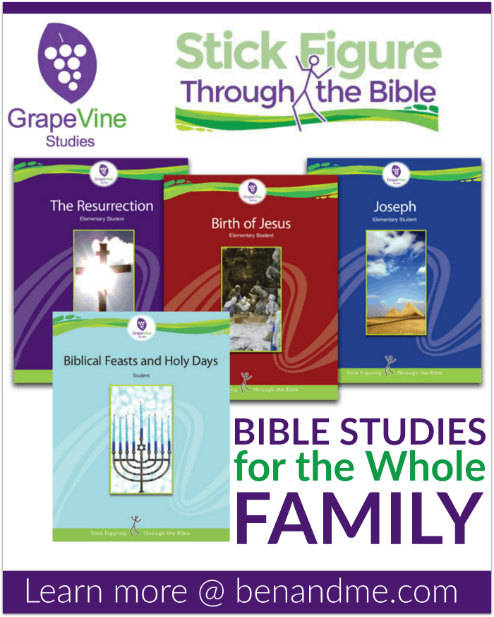 Grapevine Bible Studies Studies Stick Figure Through the Bible -- Bible Studies for the Whole Family