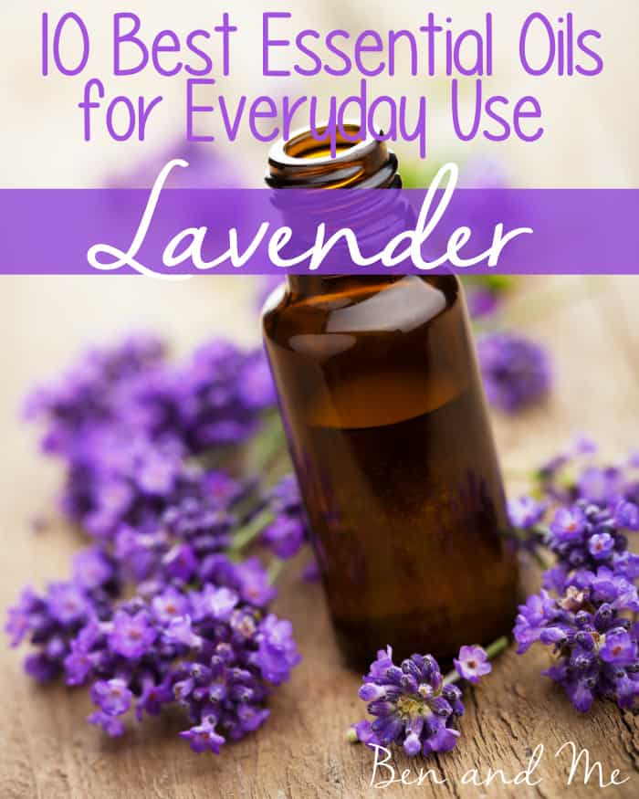 Best Essential Oils for Everyday Use -- Lavender