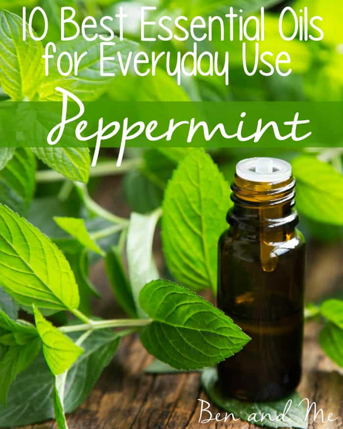Best Essential Oils for Everyday Use -- Peppermint Essential Oil