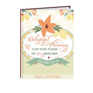 Delightful Planning Cover 3D 600