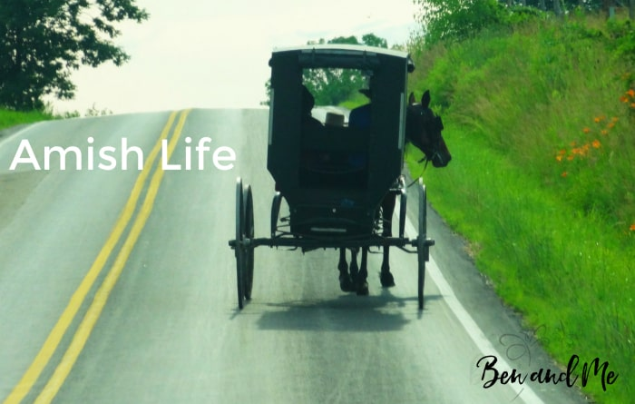 Amish Life documentary